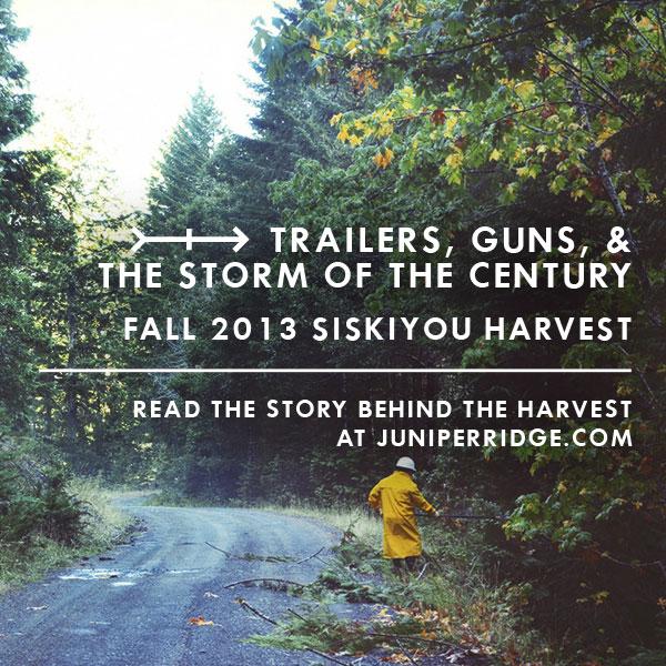 HarvestStory_IG